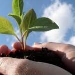 Bando MIUR: 1 mln di euro per l'agricoltura sostenibile