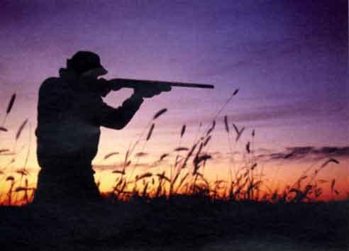 Polemica su caccia nei Parchi: lo sfogo di Legambiente
