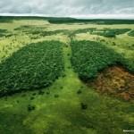 Consumo del suolo. Ogni giorno consumati 70 ettari di terreno, serve legge nazionale
