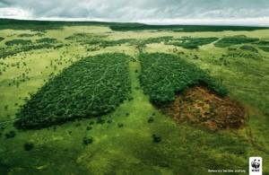 ddl-consumo-di-suolo-immagine-wwf