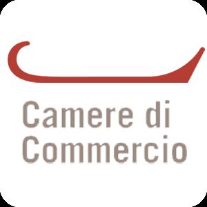 logo_camera_di_commercio