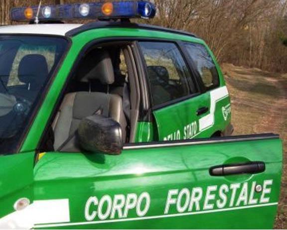 Via libera al passaggio di funzioni dal Corpo Forestale ad altri corpi di Polizia