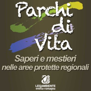 logo_parchidivita