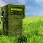 Biocarburanti: criteri geografici dei terreni