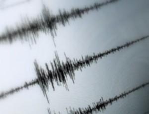 Rilevamento terremoti