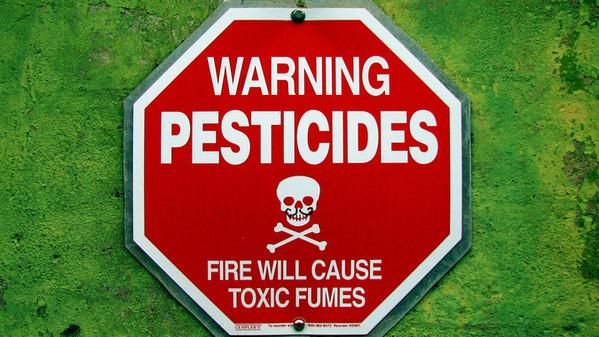 Quanto sono inquinate dai pesticidi le acque italiane?