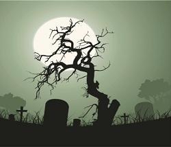 Anche per i funerali ora è possibile scegliere con comparatore online