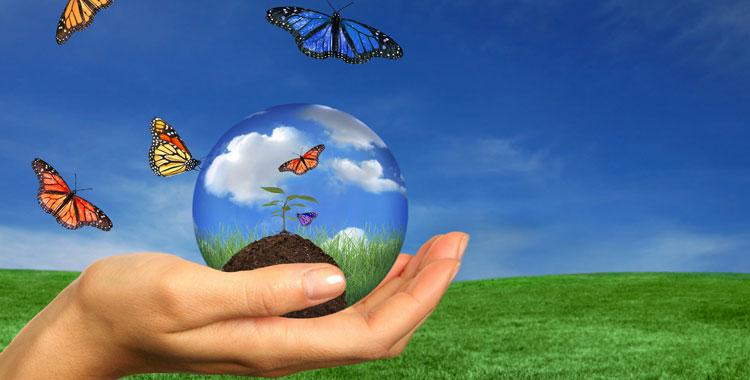 Tasse ambientali: rapporto dell'UE, qual è la situazione italiana?