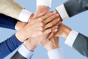 Organici Docenti e ATA: vademecum su relazioni sindacali di istituto