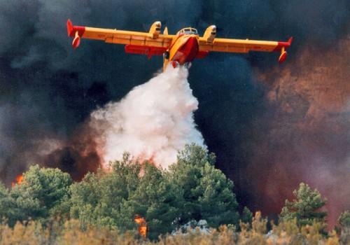 Il decalogo di Coldiretti contro gli incendi