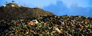 traffico di rifiuti ecoreati