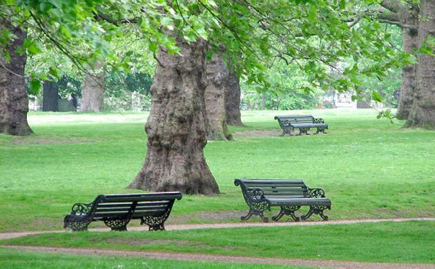 Risultati immagini per verde pubblico