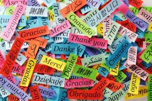 Speciale laureati in lingue straniere