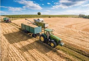 contratto rete agricolo