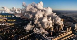 carbone petizione