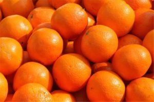 contenuto-minimo-succo-arancia