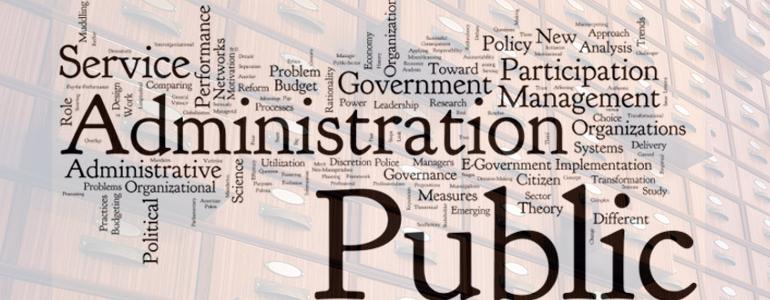 Pubblica Amministrazione, revisori e condotta fraudolenta dei dirigenti