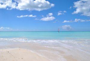 puliamo le spiagge