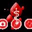Donazione Sangue: firmata intesa tra ANCI, Fidas, Fraters e CRI