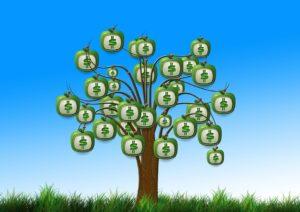 legge-di-bilancio-2019-novita-camera-pensioni