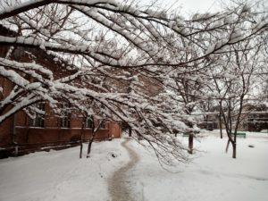 emergenza-neve-anci-basilicata