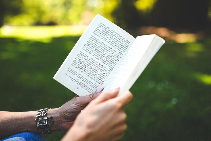 legge promozione lettura