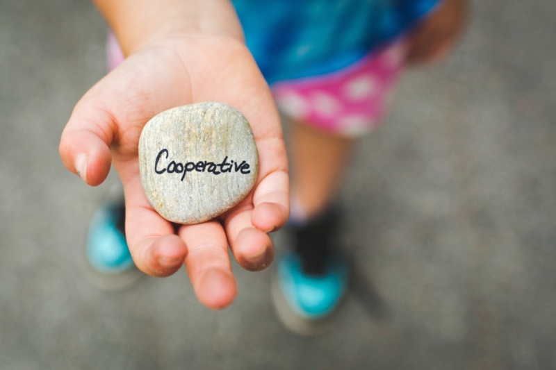 societa-cooperative-domande-finanziamento-agevolato