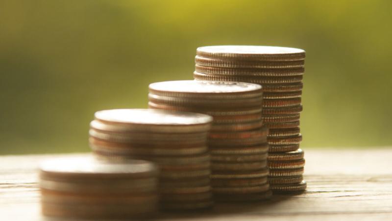 prestito-garantito-stato