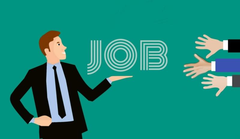 guida-portale-reclutamento-accesso-inserimento-curriculum-funzioni